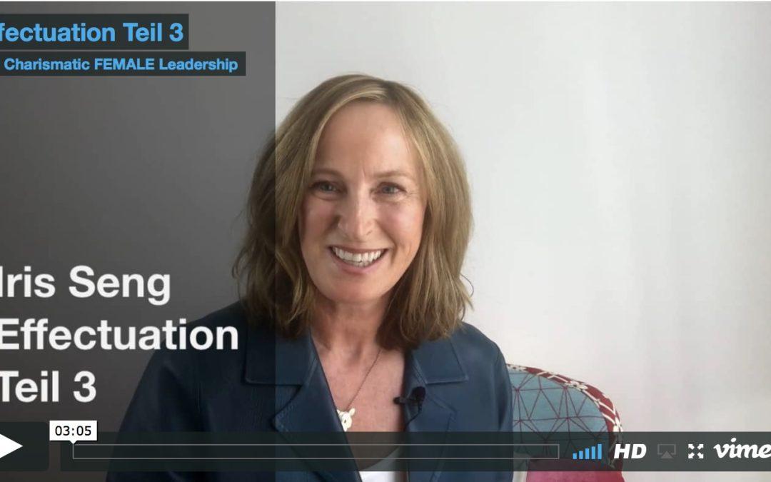 EFFECTUATION 3 – Dein Netzwerk
